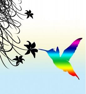 Google Hummingbird Changes